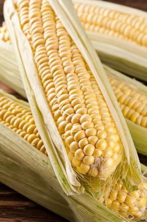 corn tortilla: sweet corn Stock Photo