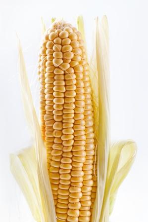 husks: sweet corn Stock Photo