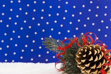 Winter Decoration with Pine Cone photo