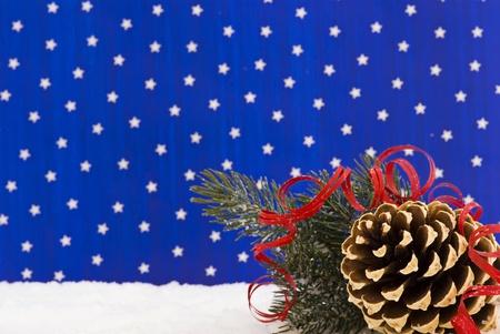 pine cone: Winter Decoration with Pine Cone
