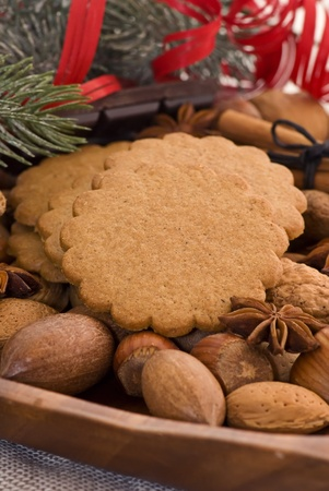 Christmas Decoration with Nuts and Gingerbread Stock Photo - 11155303