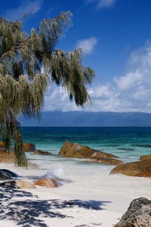 long haul journey: Tropical Beach