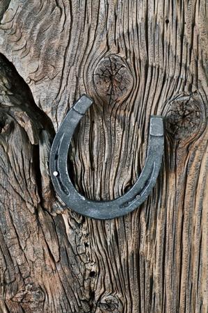 mojo: Horse Shoe on the woodboard