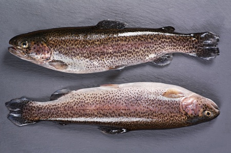 rainbow trouts on a slate plate photo