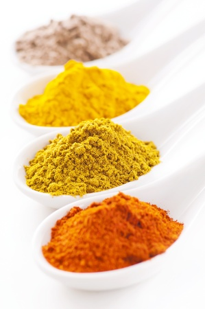 spices Stock Photo - 14450430