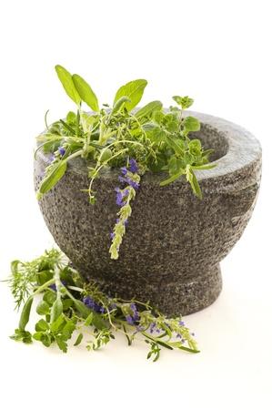 ccedil: Fresh herbs in granite mortar Stock Photo