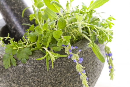granite mortar with fresh herbs photo
