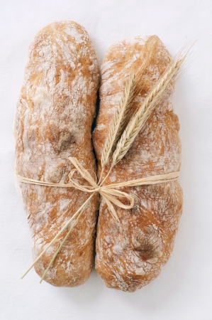 artisan bread isolated photo