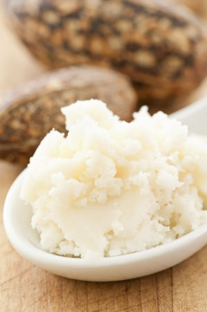 shea butter Stock Photo - 14867852