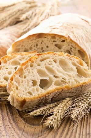 white bread  photo