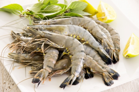 fresh prawns photo
