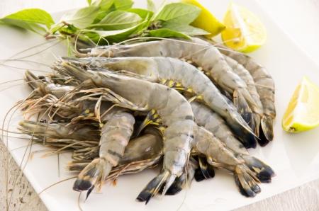 gambas: fresh prawns