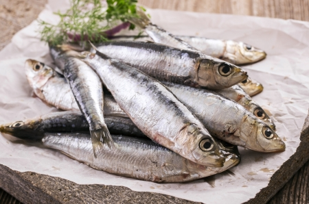 anchovy fish: anchovis
