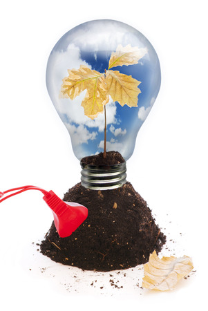 standby: light bulb Stock Photo