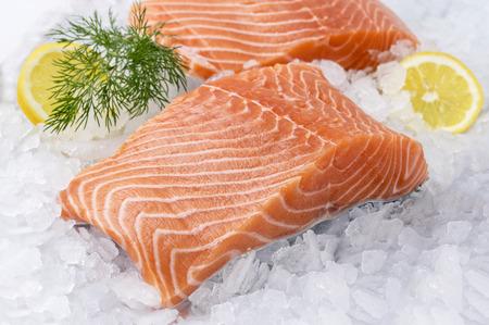 salmon filet: Salmon Filet on Ice