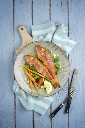 goatfish: Barbecue Red Mullet on Plate Stock Photo