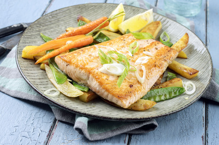 dish: Salmon Filet with Vegetable Stock Photo