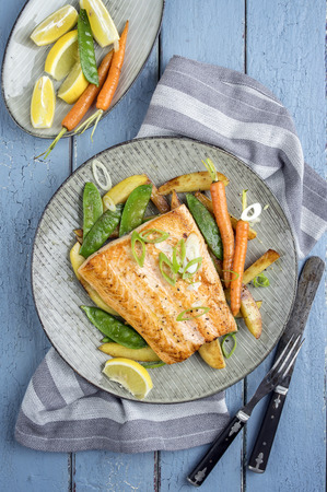 salmons: Salmon Filet with Vegetable Stock Photo
