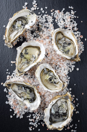 slurp: Oysters Stock Photo