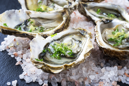 sydney: Fresh Oysters Stock Photo