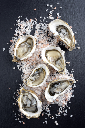 slurp: Fresh Oysters Stock Photo