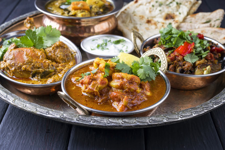 Indian Dishes on traditional Thali Zdjęcie Seryjne - 74308470