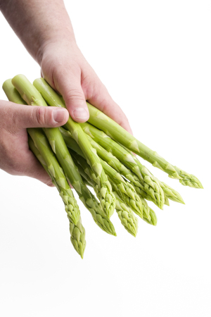 Fresh green asparagus as close up in hands of a man - covered on white background