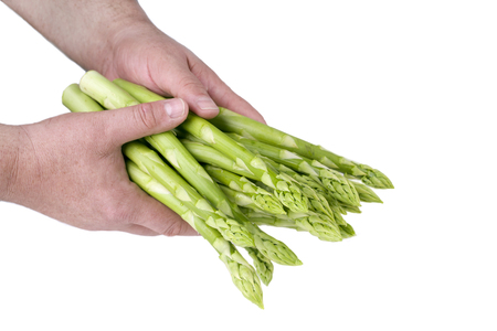 delikatesse: Fresh green Asparagus as close-up in hands of a man  covered on white background Stock Photo