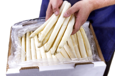 delikatesse: Fresh white Asparagus as close-up in a box for sales ? covered on white background Stock Photo