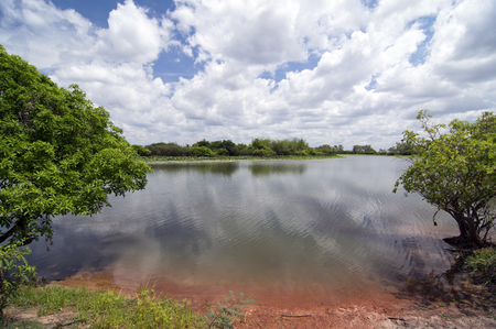 Outback Billabong in Northern Territory Stock Photo