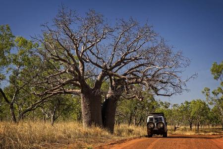 Kimberleys - 西オーストラリアのアウトバックを追跡します。 写真素材