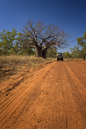 Outback Track at the Kimberleys - Western Australia Stock Photo