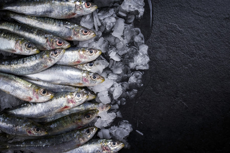 Raw sardine on ice offered as top view on a black slate