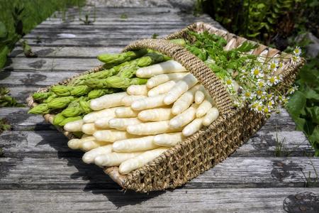 Frischer roher weißer und grüner Spargel als Nahaufnahme in einem Korb draußen an einer hölzernen Brücke Standard-Bild - 94523755