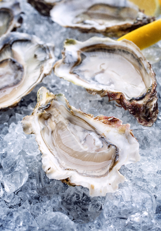 Fresh opened oyster with sliced lemon offered as top view on crushed ice