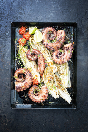 Traditional French octopus braised cooked with chicory and tomatoes in wine sauce as top view on an old rustic metal sheet