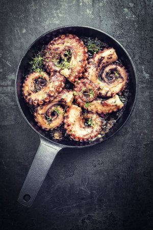 Traditional Spanish octopus braised cooked with tomatoes and herbs in wine sauce as closeup in a cast-iron saucepan copy space - vintage Imagens