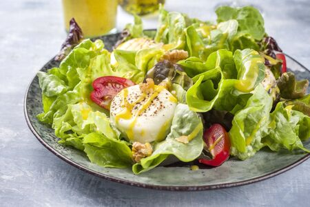 Traditional Germen summer lettuce with curled lettuce, goat cheese and mango dressing as closeup on a plate on a well laid table 版權商用圖片