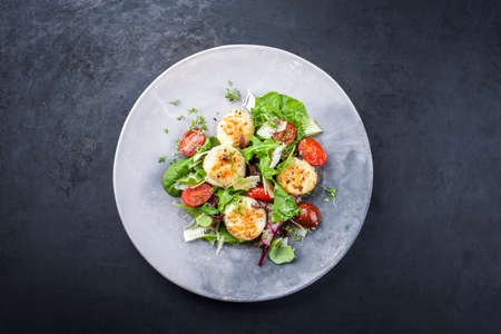 Traditional barbecue scallops with tomatoes, lettuce and Italian parmesan cheese offered as top view on a modern design plate with copy space
