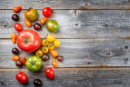Traditional Italian fresh tomato collection offered as top view on a rustic wooden board with copy space right Фото со стока