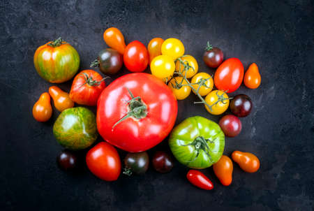 Traditional Italian fresh tomato collection offered as top view on a rustic black board with copy space Фото со стока
