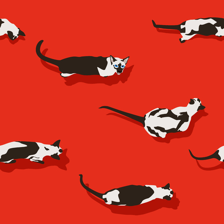 Siamese cat seamless pattern on red background. Flat style with shadow. Funny animals. Vector illustration. Pet cartoon texture, wallpaper.