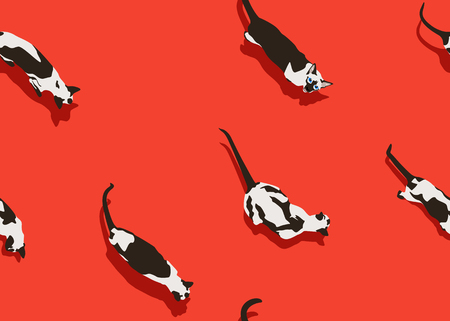 Siamese cat seamless pattern on red background. Flat style with shadow. Funny animals walk. Vector illustration. Pet cartoon texture for print, banner, postcard, card, wallpaper, web, gift pack.