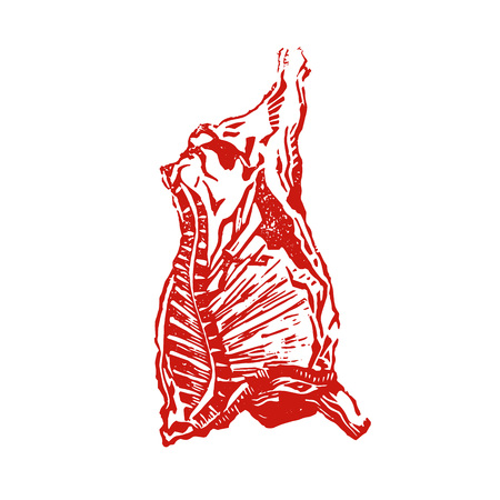 Ð¡ow carcass engraving vector illustration. Meat cow etching. Hand made print. Red beef.