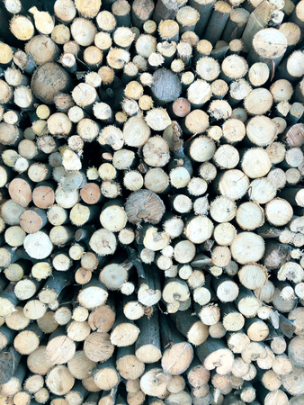 Firewood for heating, fires, fireplaces. Background from sawn tree trunks.