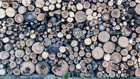 Firewood for heating, fires, fireplaces. Background from sawed tree trunks. Imagens