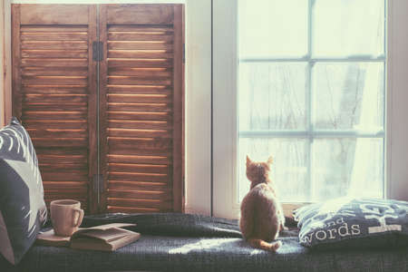 life style: Warm and cozy window seat with cushions and a opened book, light through vintage shutters, rustic style home decor.