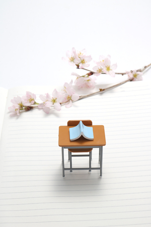 intramural: Study desk, blue book and cherry blossoms on the notebook.