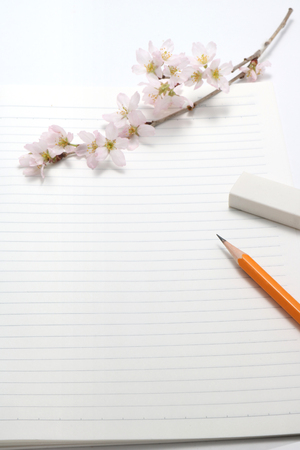 intramural: Cherry blossoms and writing utensils on the notebook.