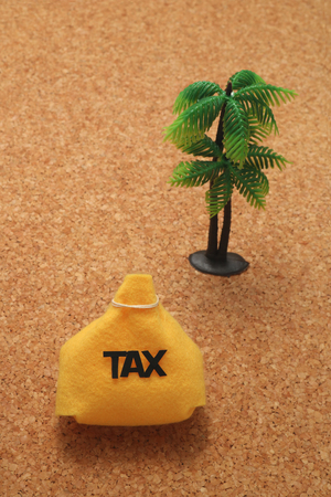 avoidance: Tax and palm trees. offshore island. Financial concept. Stock Photo